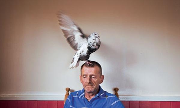 Pigeon fancier in Edinburgh