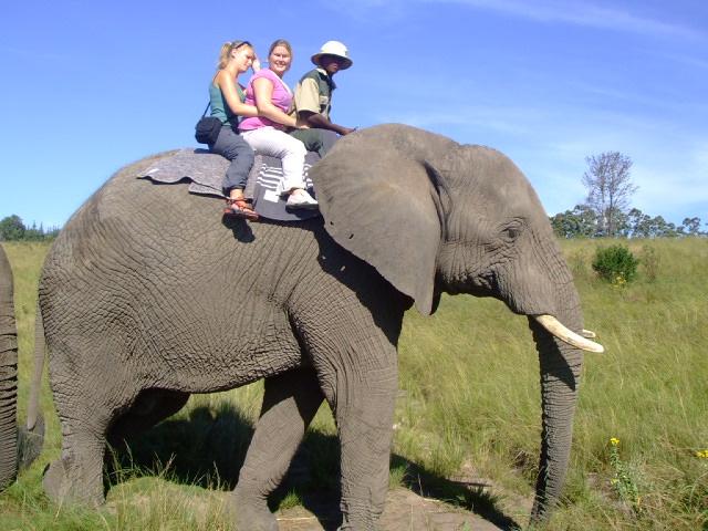 www.africa-safari.org.za