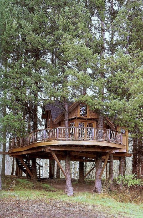 Beautiful Tree House Ideas (15)