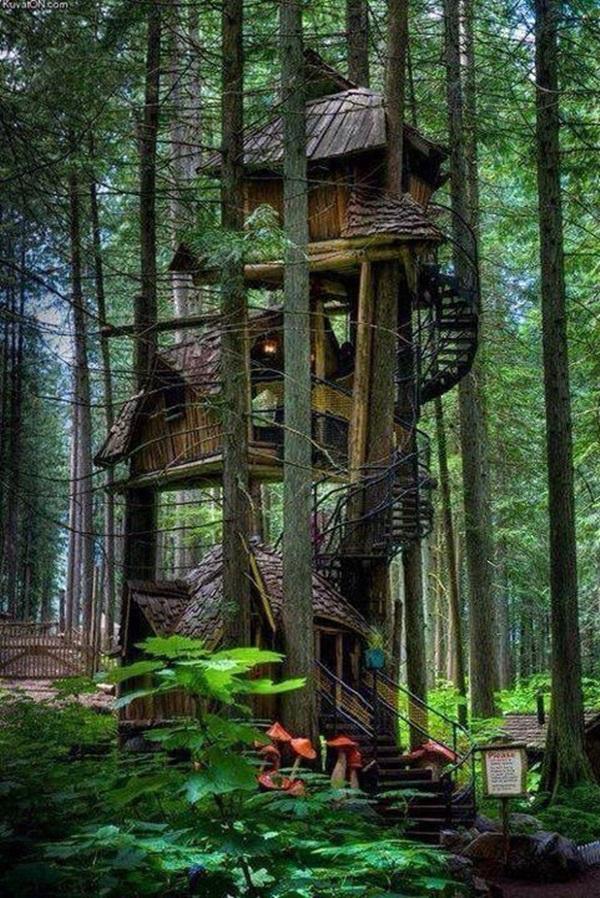 Beautiful Tree House Ideas (19)