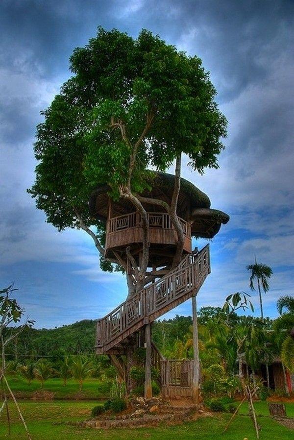 Beautiful Tree House Ideas (32)