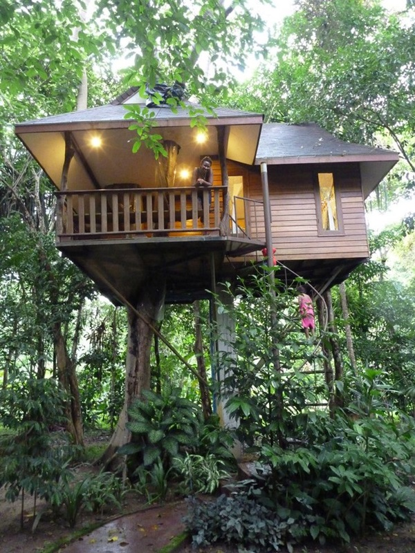 Beautiful Tree House Ideas (4)