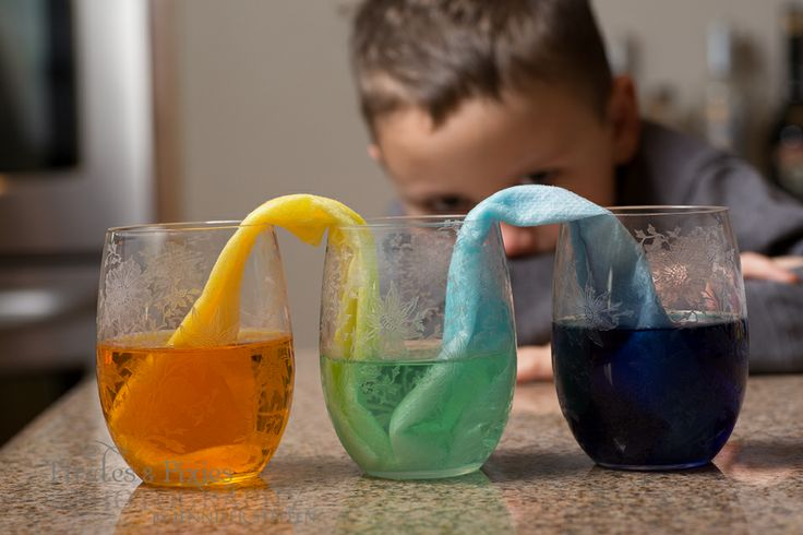 pre school science activities 1