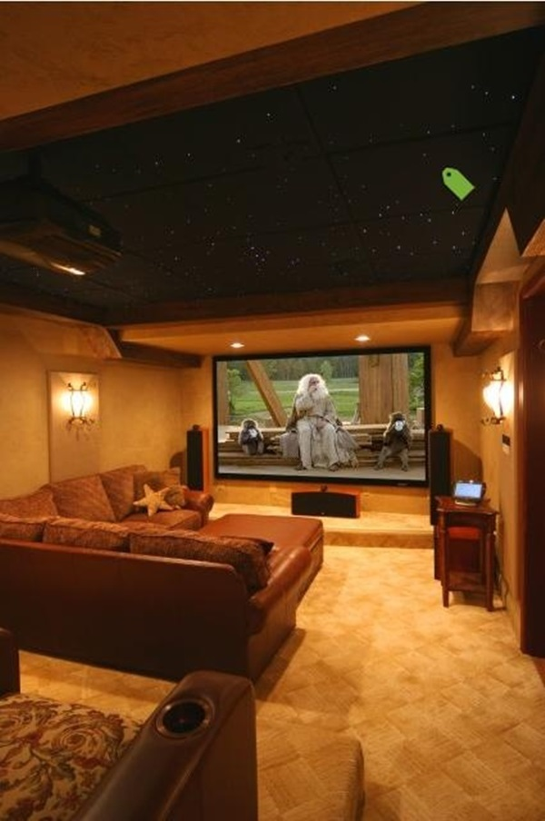 Amazing Home Theater Designs and Ideas (35)