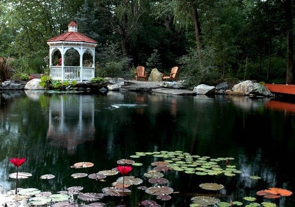 Elegant Backward Pond design (14)