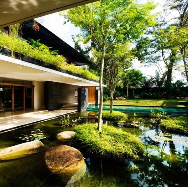 Elegant Backward Pond design (16)