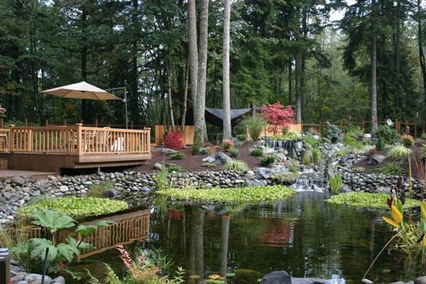 Elegant Backward Pond design (17)