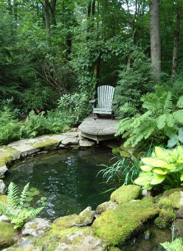 Elegant Backward Pond design (19)