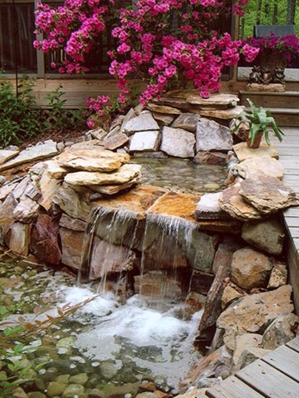 Elegant Backward Pond design (2)