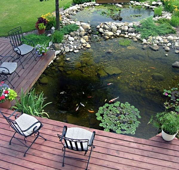Elegant Backward Pond design (22)