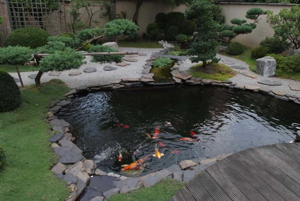 Elegant Backward Pond design (26)