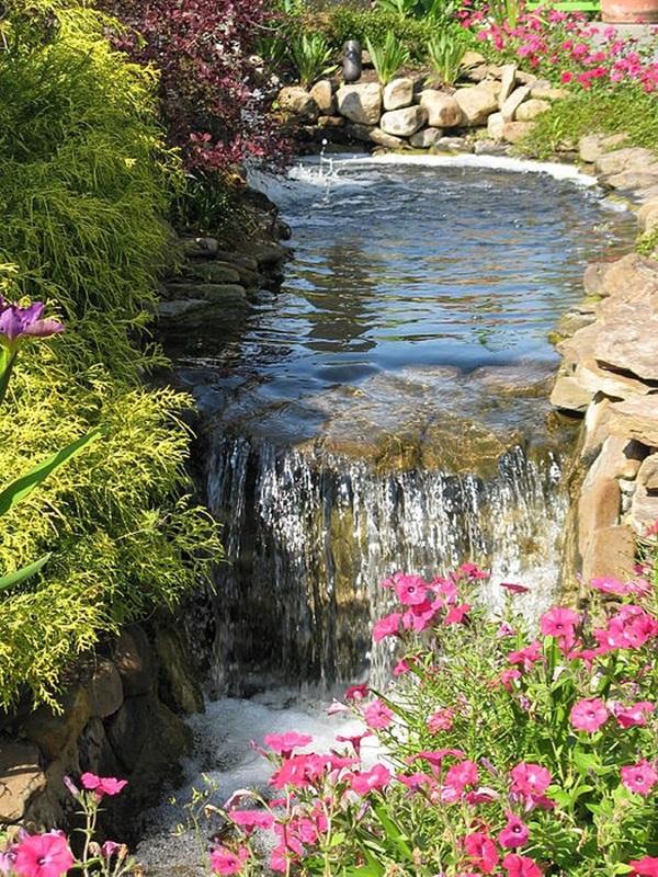 Elegant Backward Pond design (30)