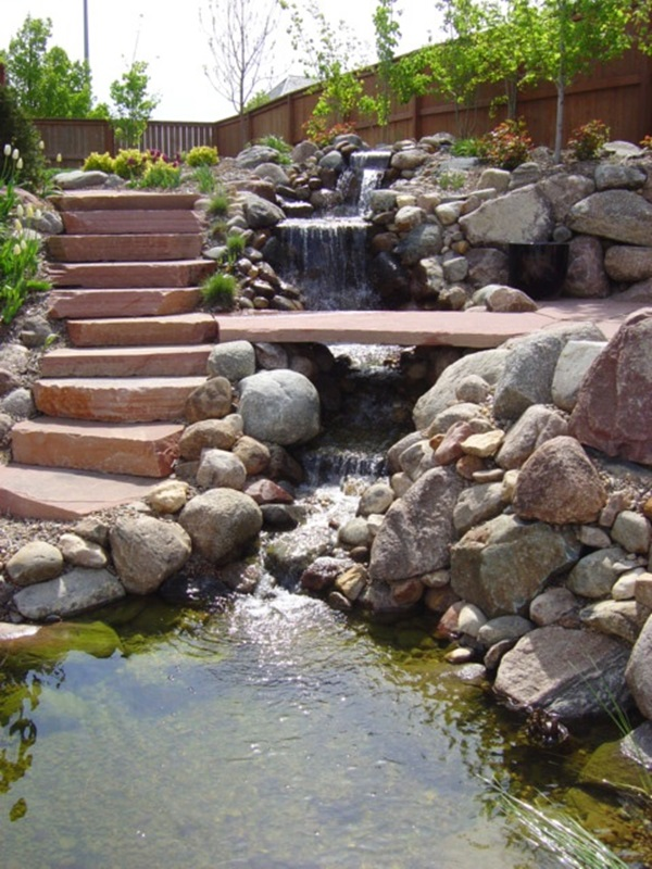 Elegant Backward Pond design (32)