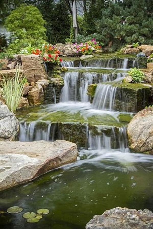 Elegant Backward Pond design (4)