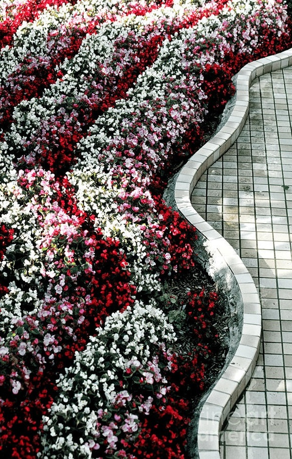 Cool Garden Edging Ideas (15)