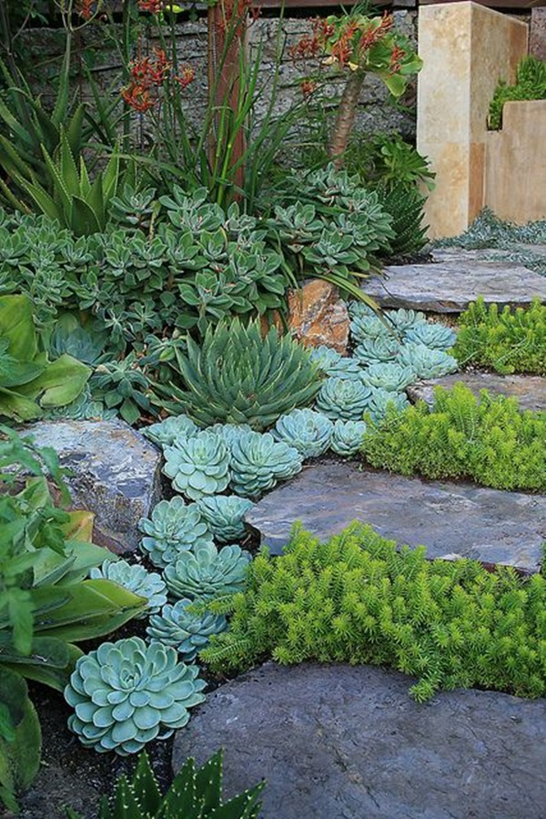 Cool Garden Edging Ideas (4)