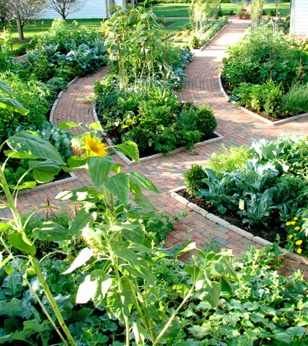 Cool Garden Edging Ideas (5)