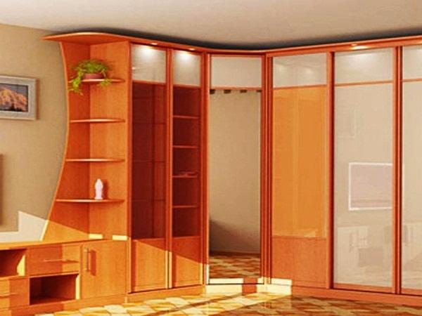 Cool Wall Almirah Ideas (31)
