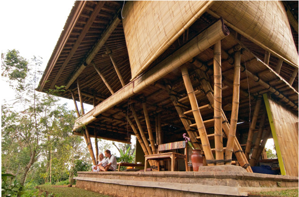 Raw Bamboo House Designs (5)