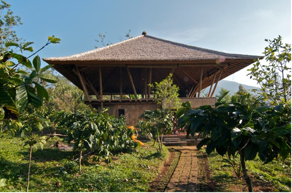 Raw Bamboo House Designs (8)