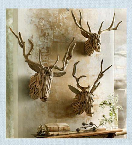 driftwood 31