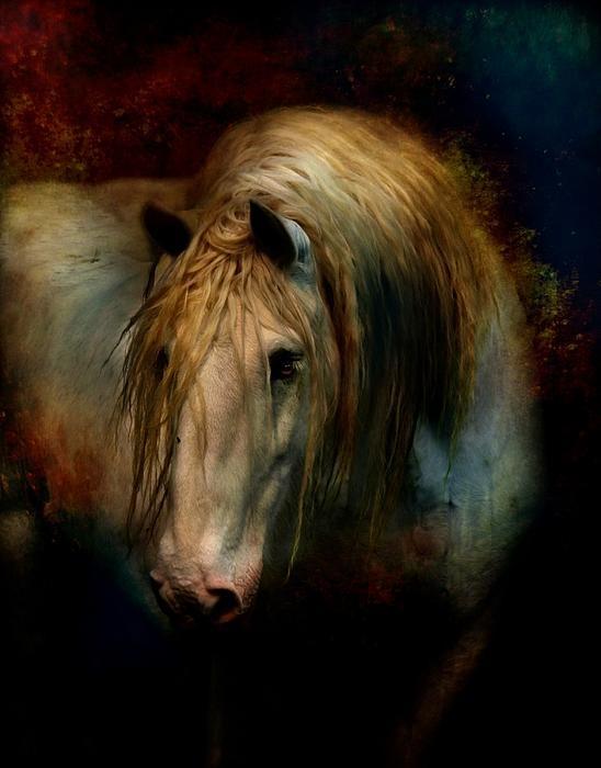 equine art 1