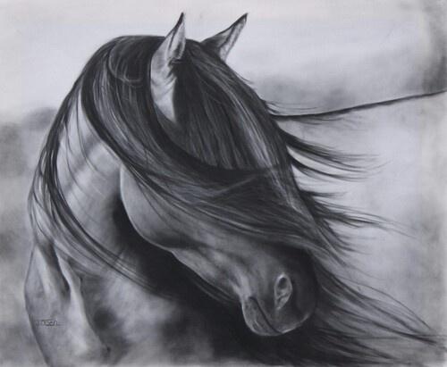 equine art 31