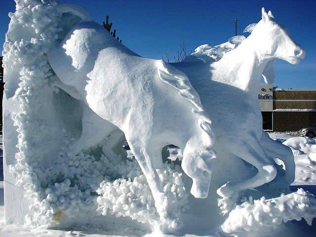 equine art 34