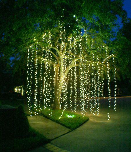 decorative lights 21