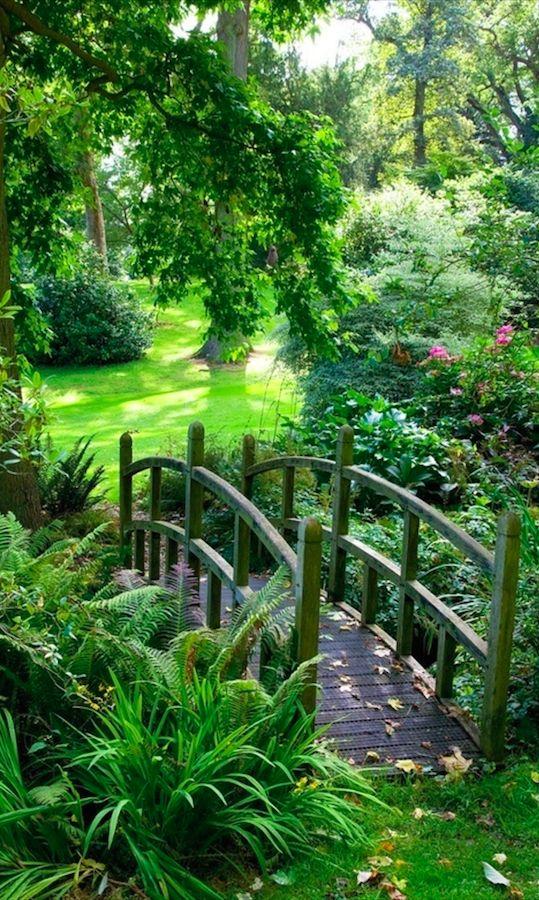 house garden 17