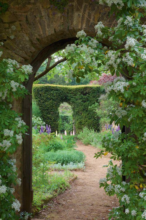 house garden 26