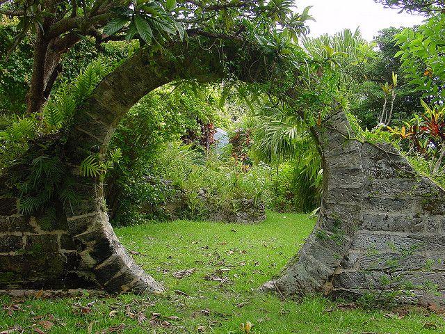house garden 40