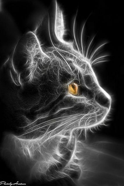 fractal art animals 1