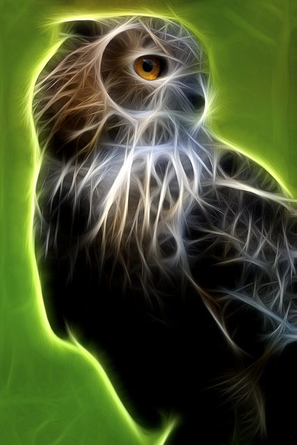 fractal art animals 4