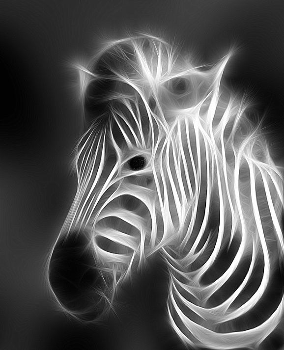 fractal art animals 9