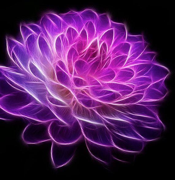 fractal art flowers 1