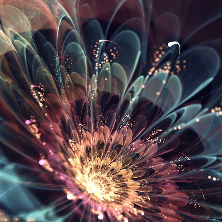 fractal art flowers 2
