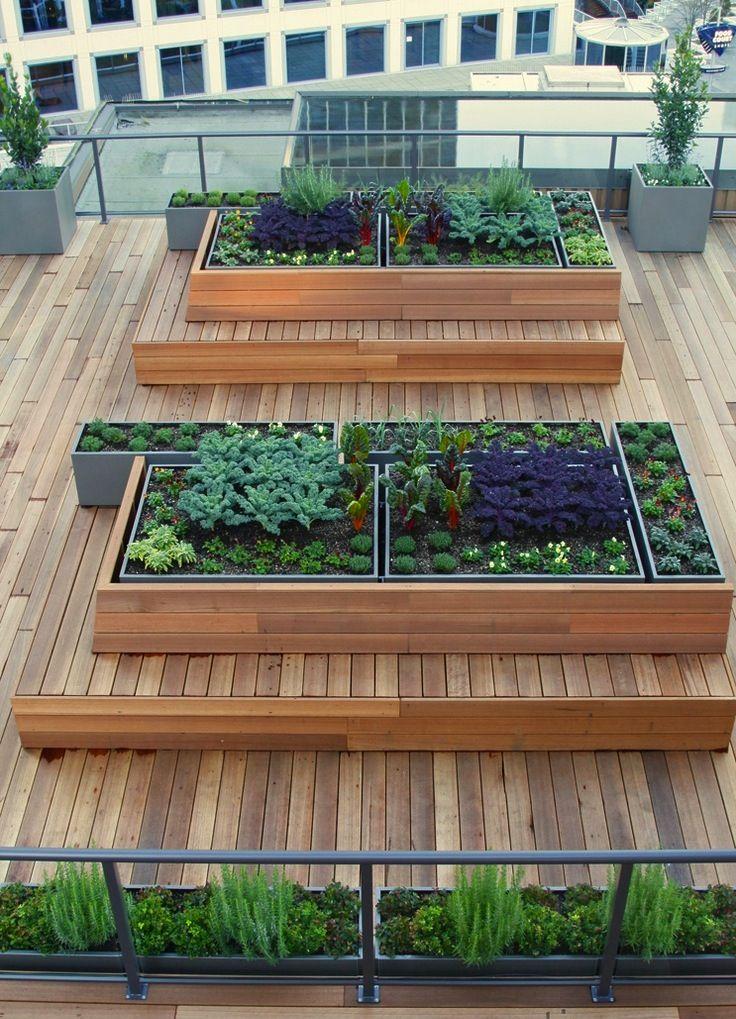 roof top garden 14