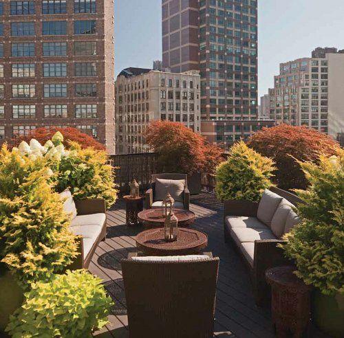 roof top garden 18