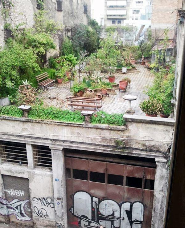 roof top garden 20