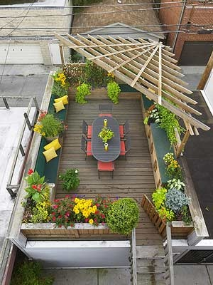 roof top garden 6