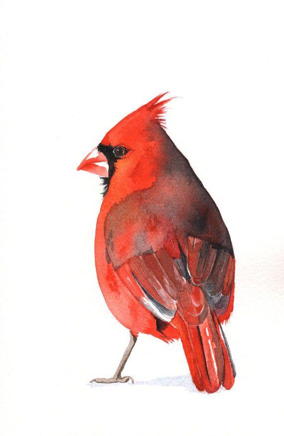 bird art 19