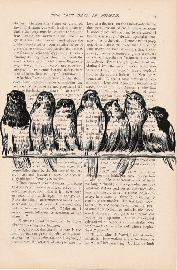bird art 7