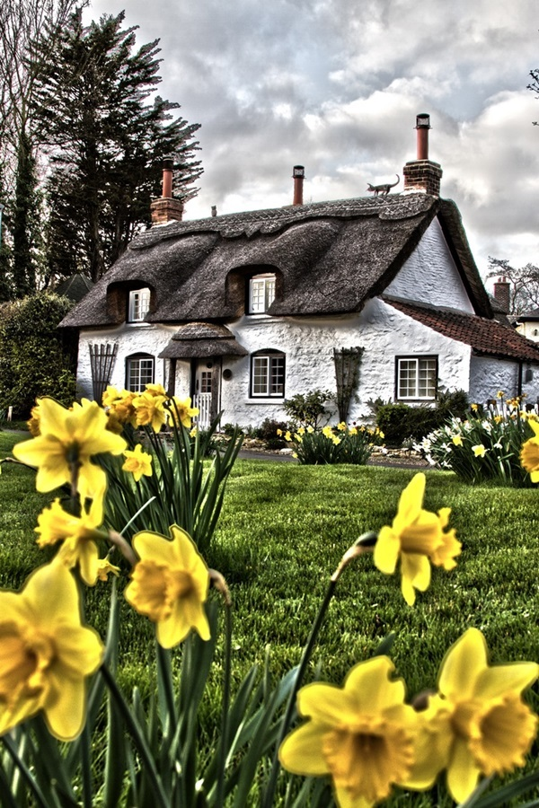 Beautiful thatch roof Cottage House Designs (15)
