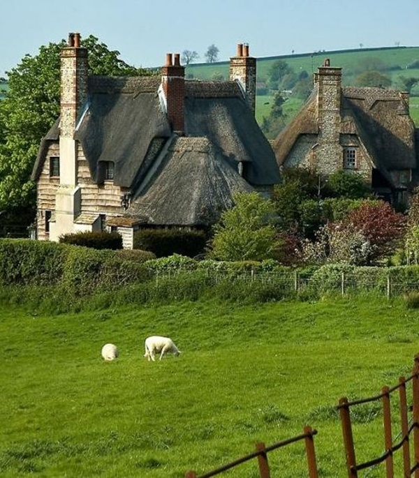 Beautiful thatch roof Cottage House Designs (2)
