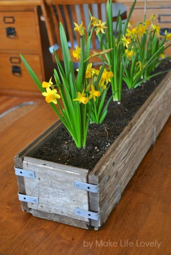 Smart space Savy Garden Ideas (2)