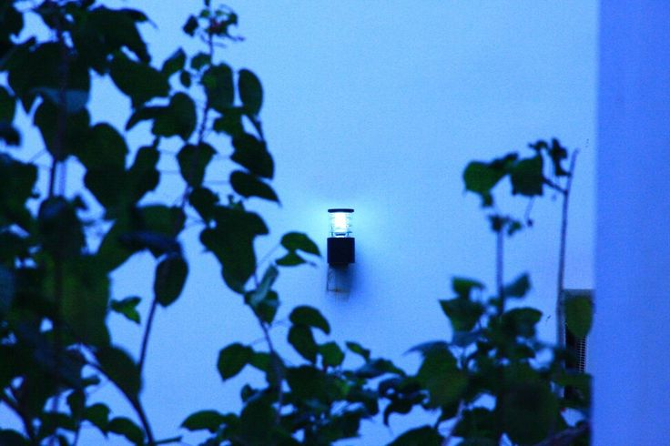 nightlamps 24