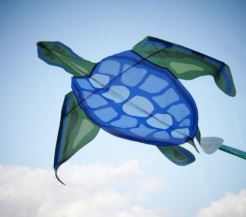 kite designs 20