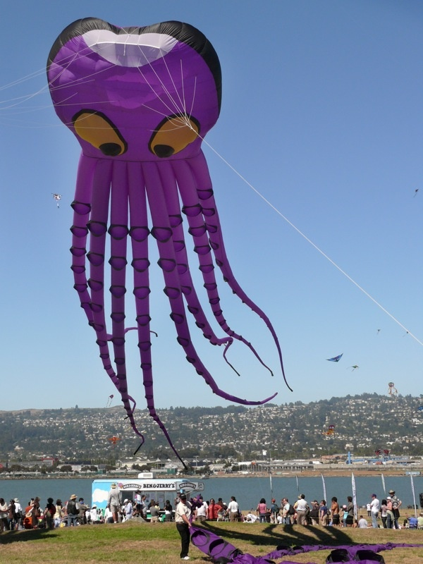 kite designs 26