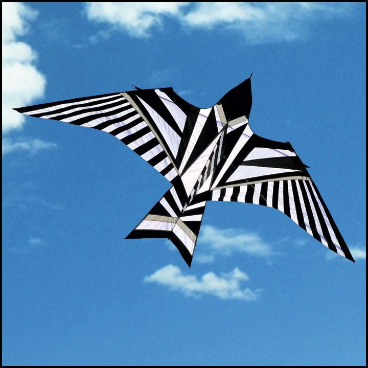 kite designs 30